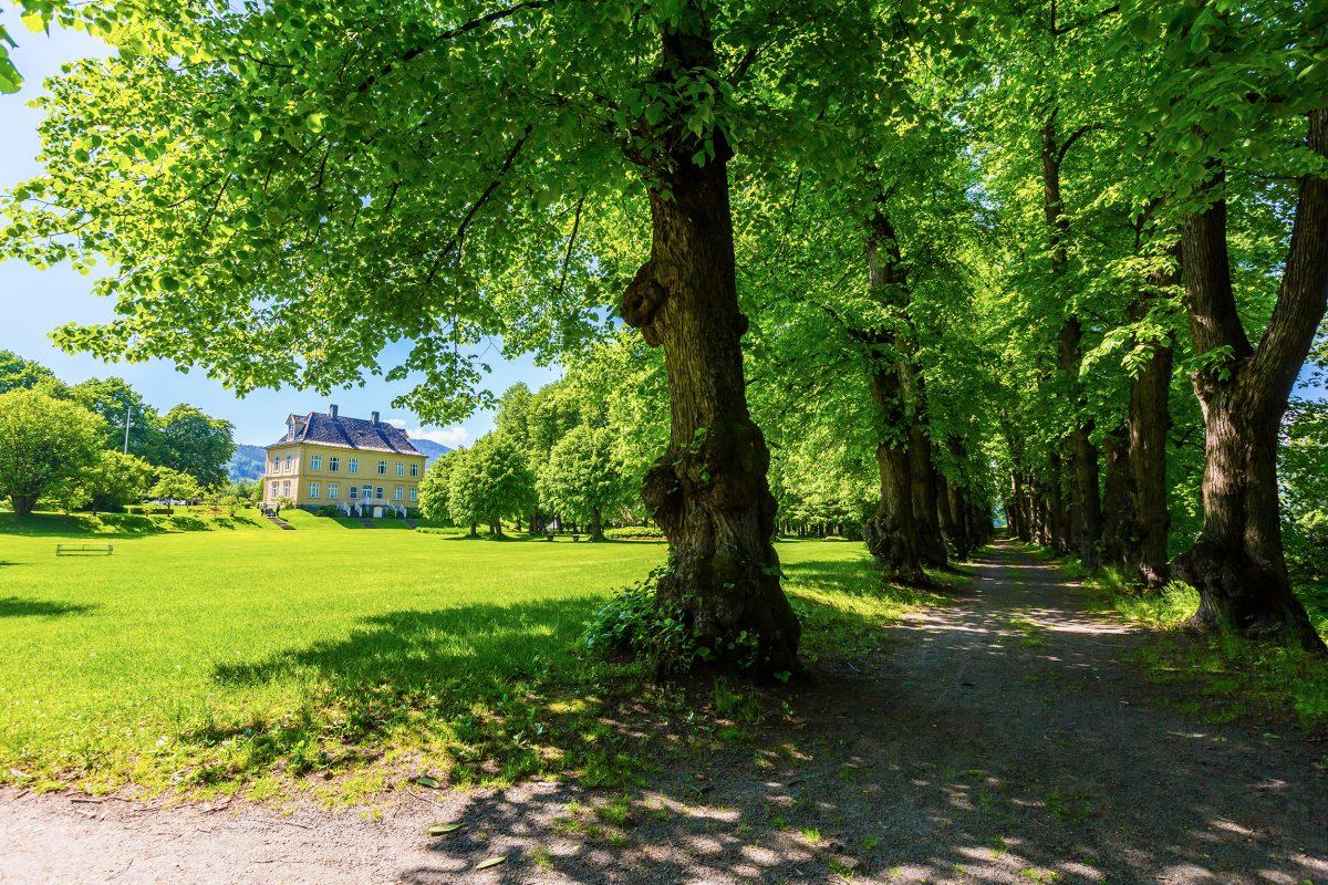 Bilde fra Gulskogen Gård